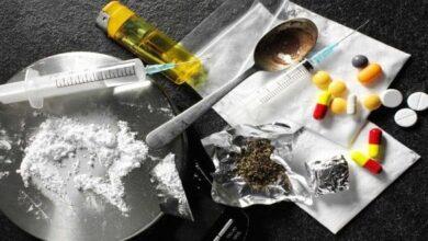 صورة جامعة كربلاء تنظم ندوة علمية الكترونية حول المخدرات و الإدمان