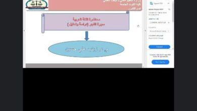 صورة محاضرة اللغة العربية  المرحلة الأولى / قسم القانون  م. د. زينب علي حسين
