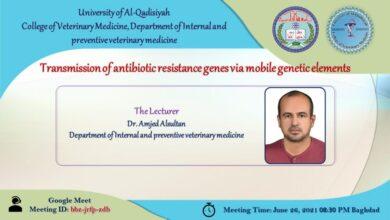 صورة محاضرة الكترونية في كلية الطب البيطري