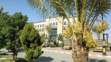 صورة صباحكم بداية جميلة وطريق مفتوح وامنيات تحقق من جامعة الكفيل