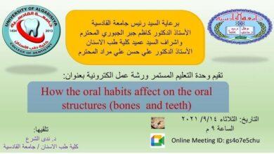 صورة ورشة عمل إلكترونية في كلية طب الأسنان